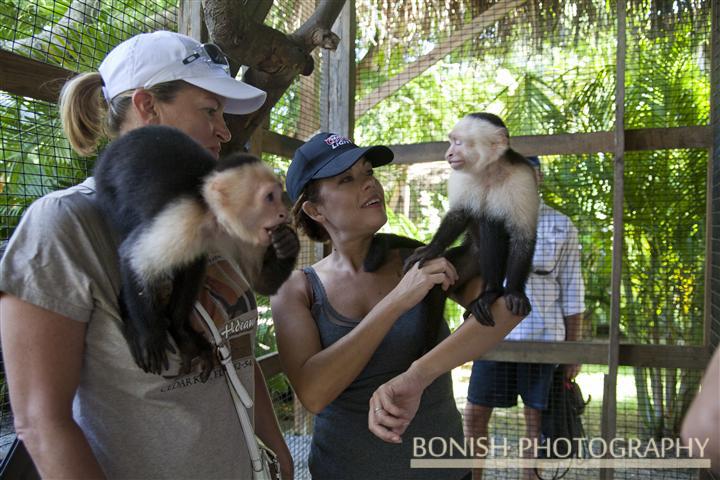 Monkey_Park_Roatan (2)