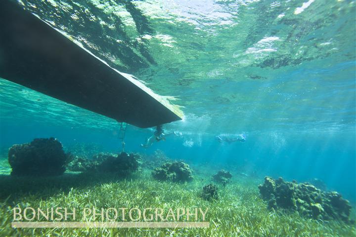 Snorkeling_Roatan (1)