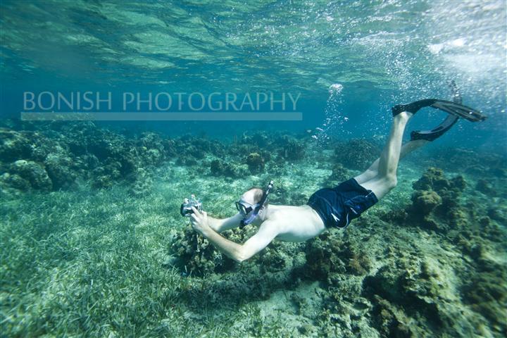 Snorkeling_Roatan (2)
