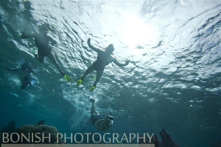 Snorkeling_Roatan (6)
