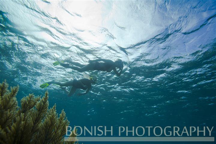 Snorkeling_Roatan (7)