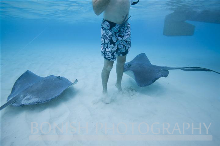 Stingray_City (3)