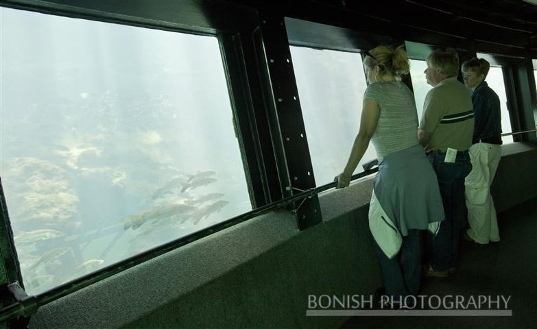 Under_Water_Observatory