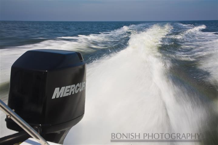 Go_Fast_Mercury