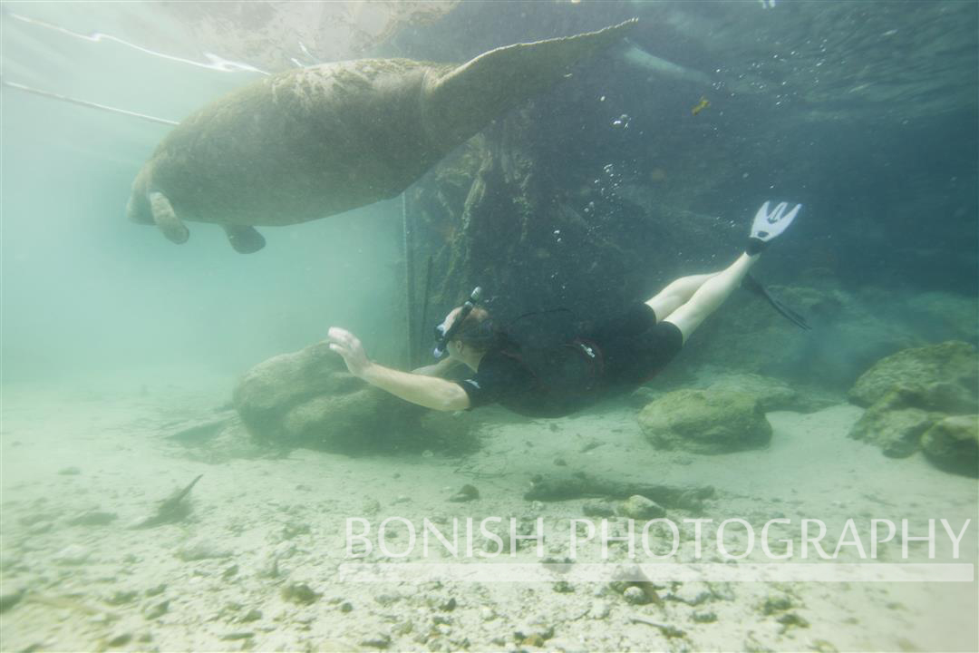 Heath_Davis_Snorkeling