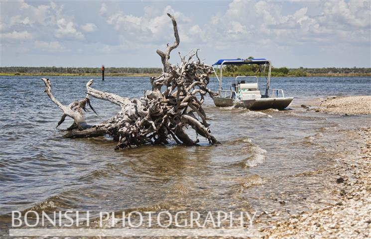 Shell_Island_Crystal_River