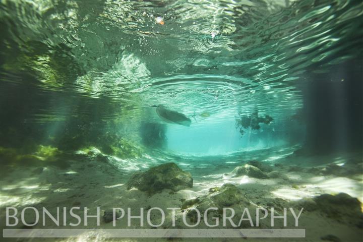 Snorkeling_3_Sisters_Spring (4)