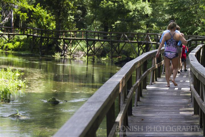 Blue_Springs_Boardwalk