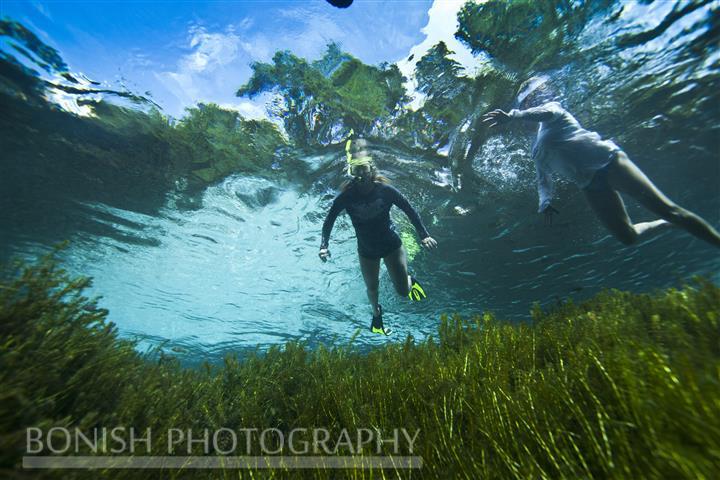 Snorkeling_Blue_Springs (2)