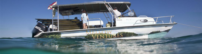 Mellow Ventures, Key West, Twin Vee, Split Shot, Underwater Photography, Bonish Photography