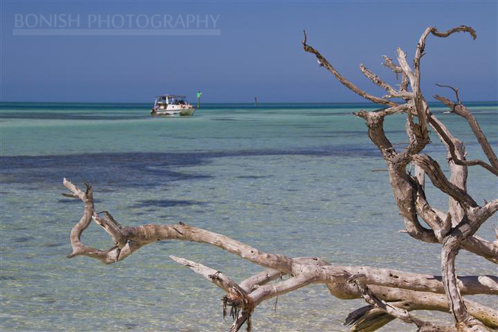 Twin Vee, Catamaran, Key West, Mellow Ventures, Bonish Photography, Driftwood