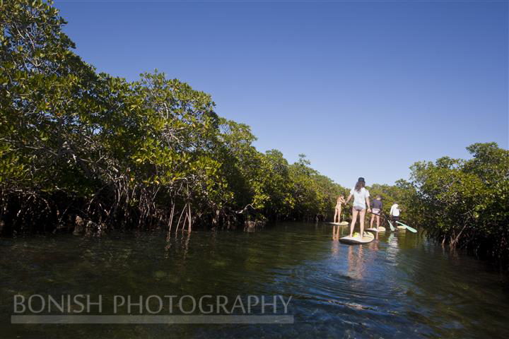 Mellow Ventures, Key West, SUP, Stand Up Paddle Boarding, Bonish Photography