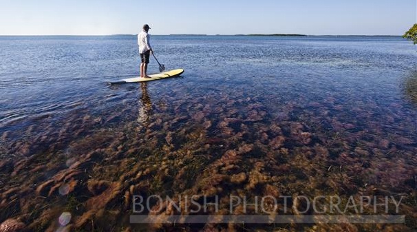 Mellow Ventures, Stand Up Paddle Boarding, Key West, Bonish Photography