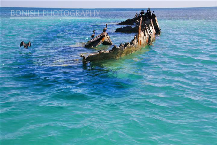 Ship Wreck, Key West, Mellow Ventures, Bonish Photogrpahy