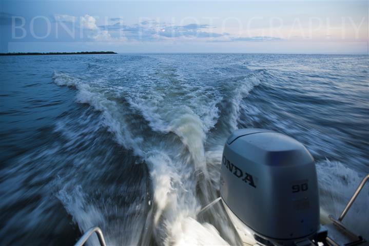 Honda 90hp, 4-stroke, Outboard, Bonish Photography, Transom Lights