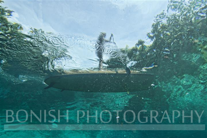 SUP, Underwater Photography, Stand Up Paddle Boarding, Bonish Photography