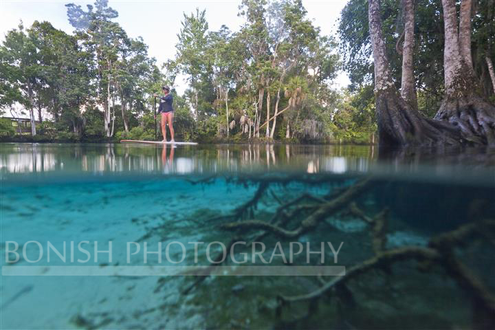 Split Shot, Underwater Photography, Springs, Crystal River, Bonish Photography, Stand Up Paddle Boarding, SUP