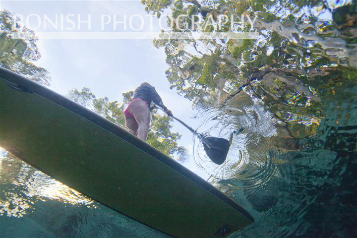 SUP, Stand Up Paddle Boarding, Bonish Photography, Underwater Photography