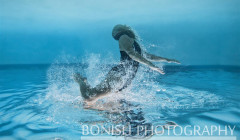 Underwater Photography, Bonish Photo, Cindy Bonish