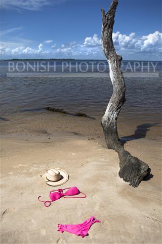 Bonish Photography, Bikini, Naked, Gulf of Mexico, Driftwood