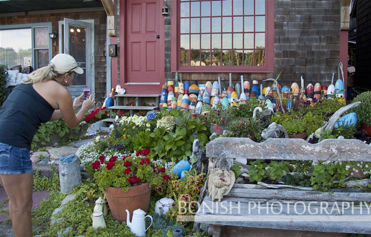 Cindy Bonish, Rockport, Bouys, Flowers, Bonish Photography