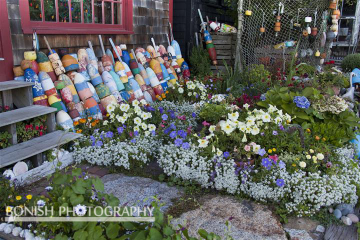 Fish Shack, Lobster Bouys, Flowers, Rockport, Bonish Photo