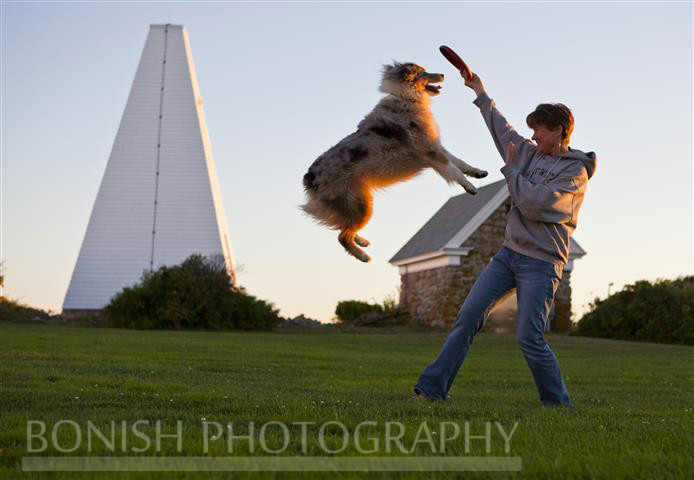 Australian Shepard, Dog, Jumping, Karen Dombrowski, Bonish Photo