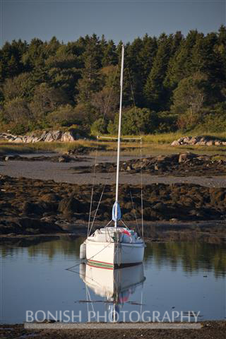 Sailboat, Cape Porpoise Harbor, Maine, Bonish Photo