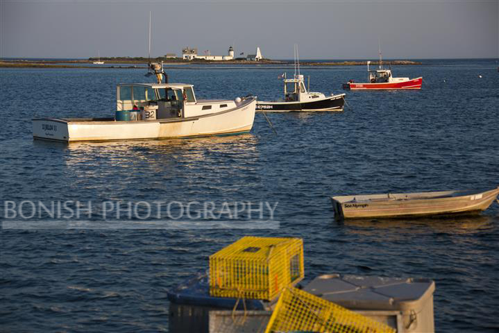 Cape Porpoise Harbor, Goat Island, Boats, Maine, Bonish Photo