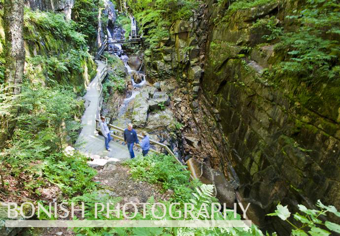 The Flume Gorge, New Hampshire, Bonish Photo