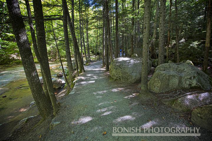 Flume Gorge, Bonish Photo, New Hampshire