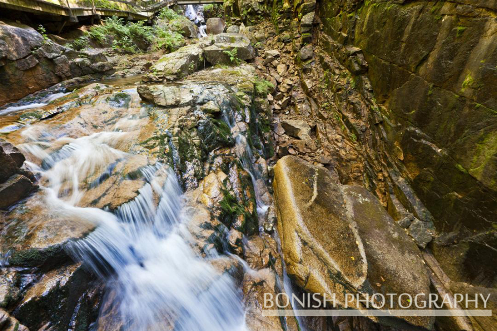 Flume Gorge, New Hampshire, Bonish Photo