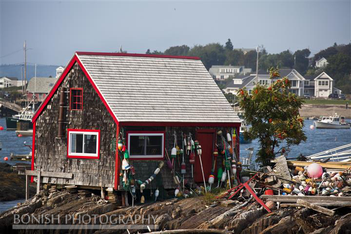 Lobster Buoys, Crab Shack, Coastline, Maine, Bonish Photo