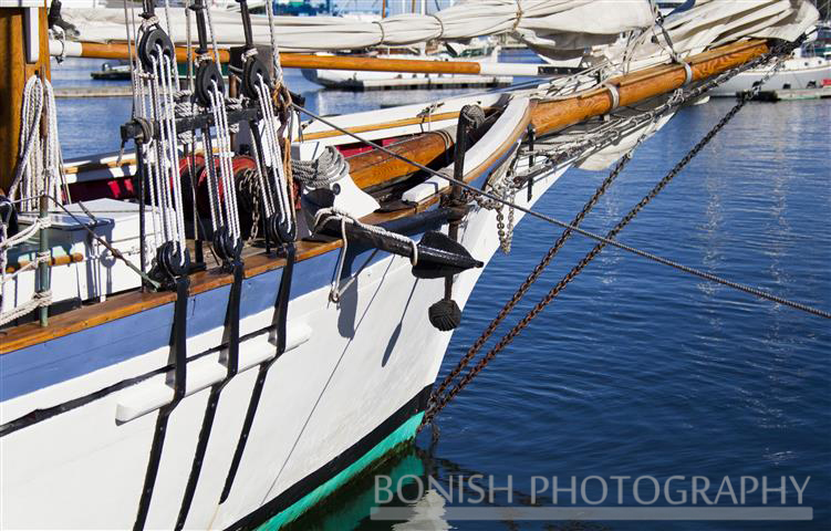 Sailboat, Camden Harbor, Rigging, Nautical, Bonish Photo