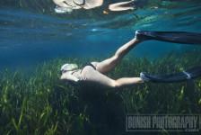 Amanda Gilbert, Underwater Photography, Bonish Photo