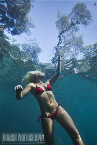 Juniper Spring, Underwater Photography, Bonish Photo