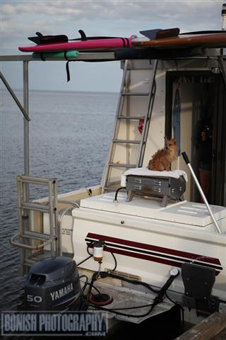 Boat Dog, Catamaran Cruiser, Houseboat, Cedar Key, Bonish Photo, Trailerable Houseboat