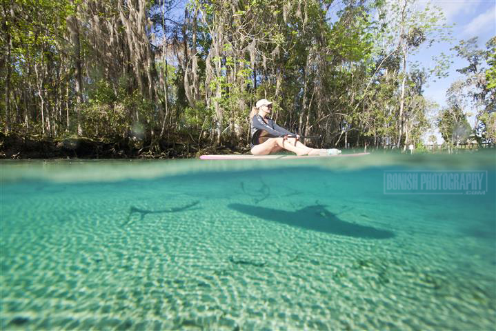 Split Shot, Underwater Photography, Bonish Photo, Florida, 3 Sisters Spring