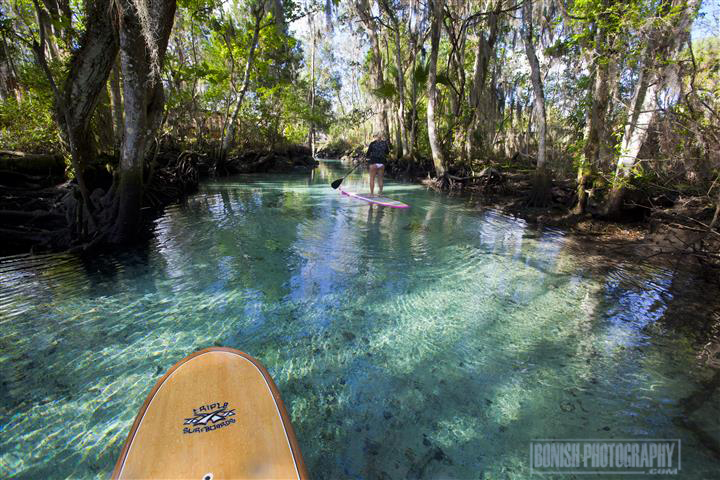 SUP, Stand Up Paddle Boarding, Florida, Bonish Photography