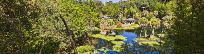 Cedar Lakes Woods & Gardens, Williston, Florida, Every Miles A Memory, Travel, Bonish Photo