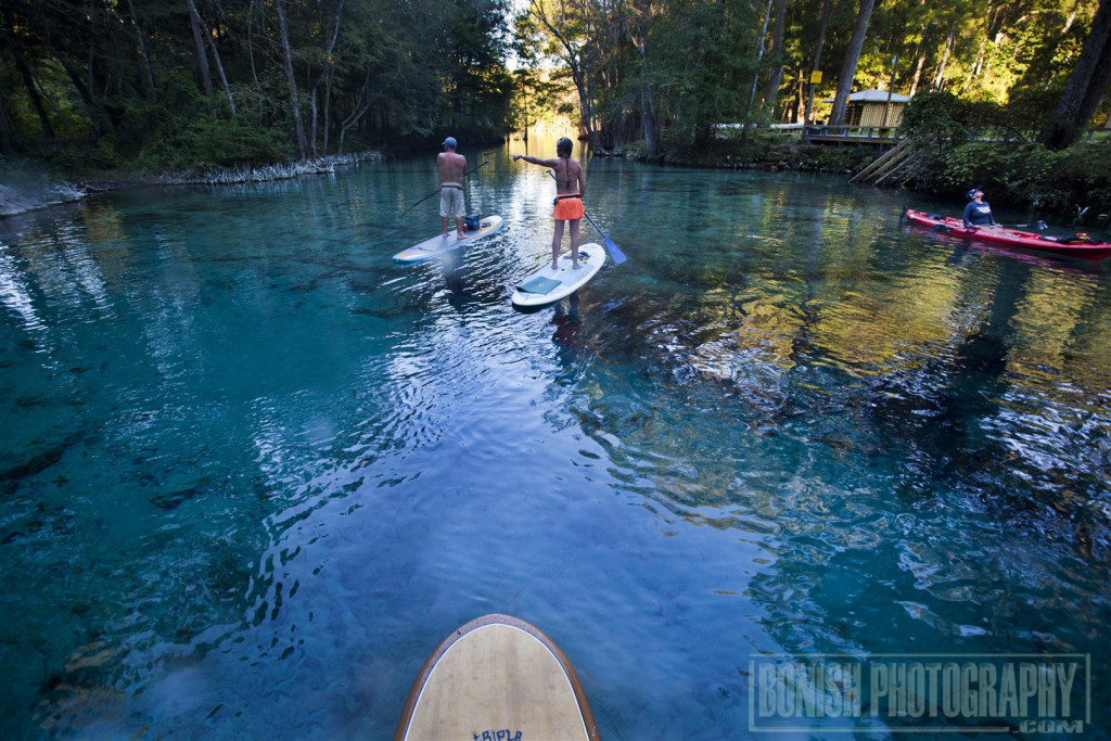 Ginnie Springs, Stand Up Paddle Boarding, Bonish Photo, Every Miles A Memory, Bonish Photo