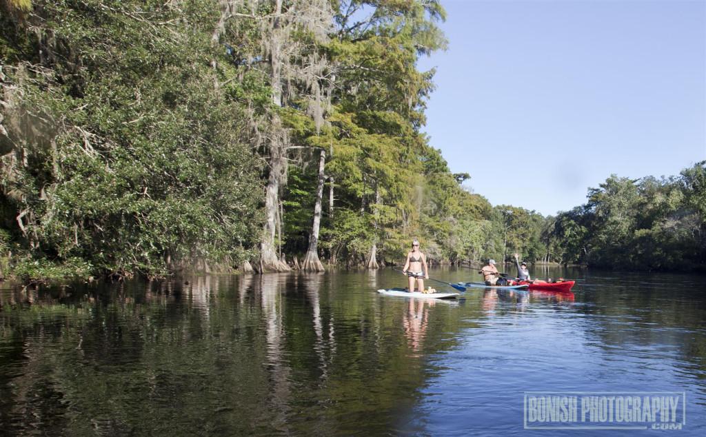 Santa Fe River, Kayaking, Paddle Boarding, Bonish Photo, Every Miles A Memory,