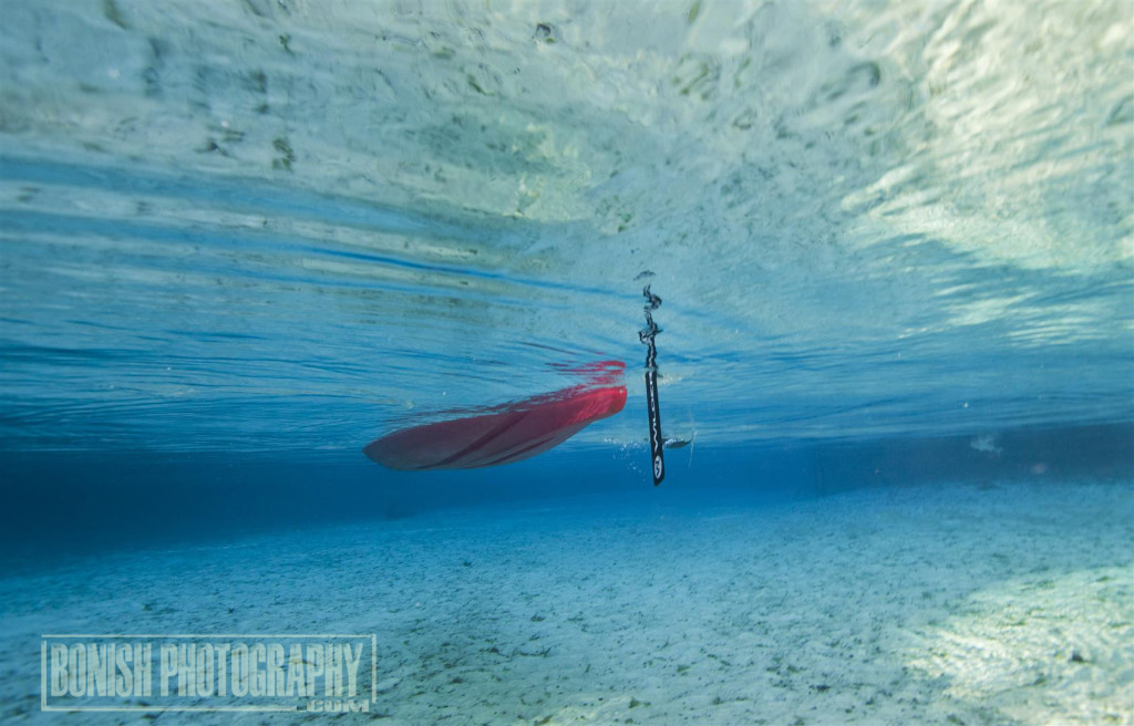 Kayaking, Blue Spring, underwater Photography, Bonish Photo, Every Miles A Memory