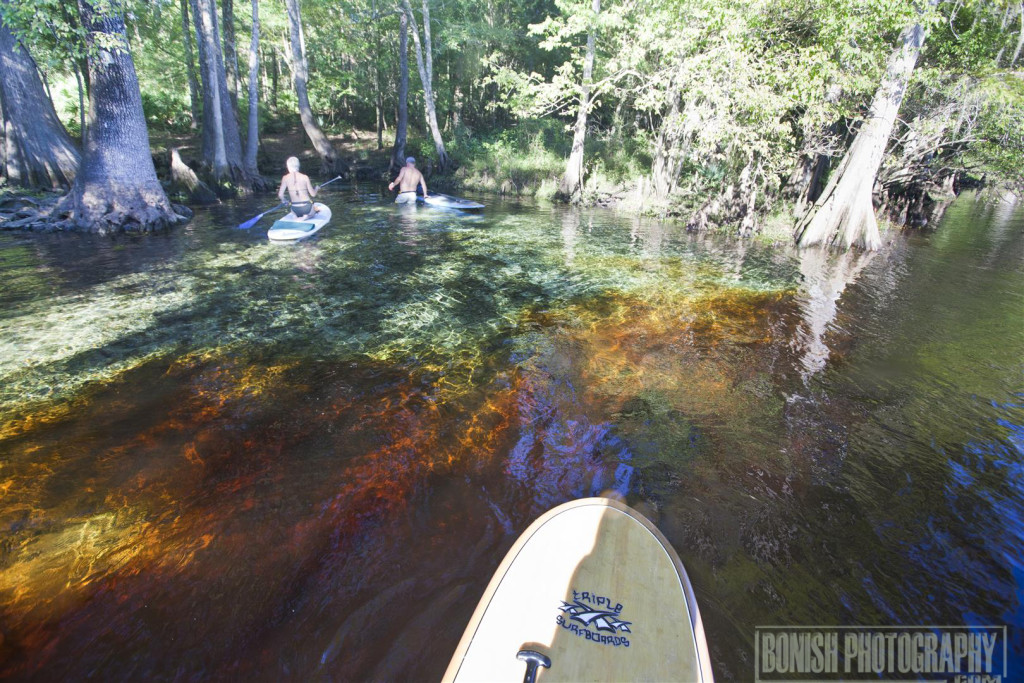 Rum Island Spring, Santa Fe River, Paddling, Stand Up Paddle Boarding, Every Miles A Memory, Bonish Photo, Florida Springs