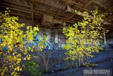 Abandoned, Detroit, Bonish Photo, Graffiti, URBEX