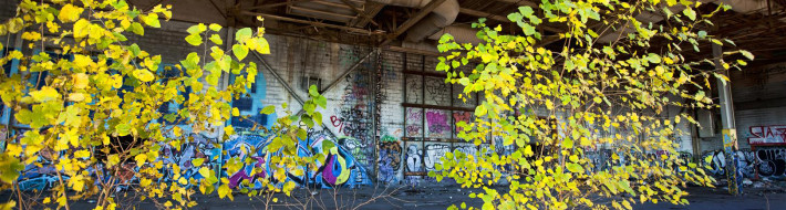 Abandoned, Detroit, Bonish Photo, Graffiti, URBEX