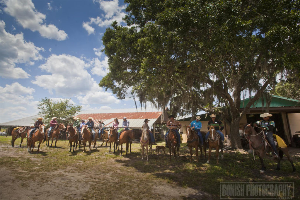 Cattle Drive, Lightsey Cattle Company, Florida Cattle Ranchers, Bonish Photo