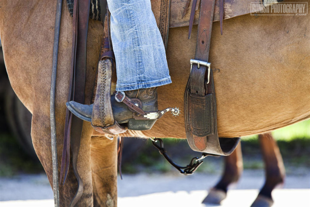 Cowboy, Saddled Up, Bonish Photo