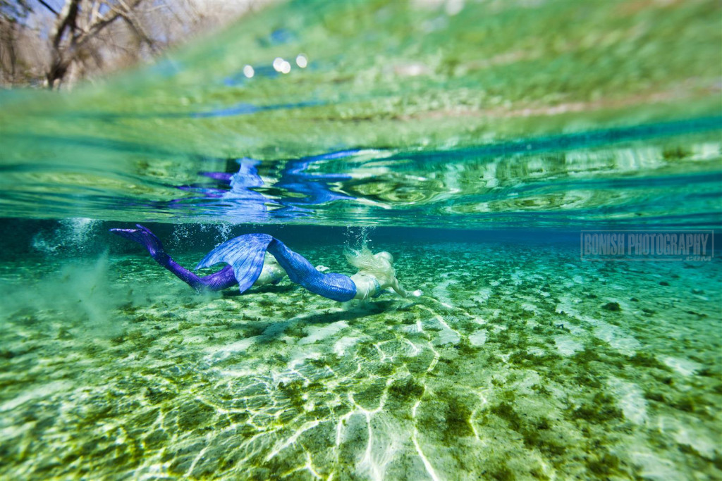 Mermaids, Bonish Photo, Florida Springs,