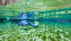 Mermaids, Bonish Photo, Florida Springs,